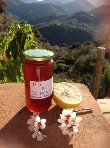 Colmenar honey