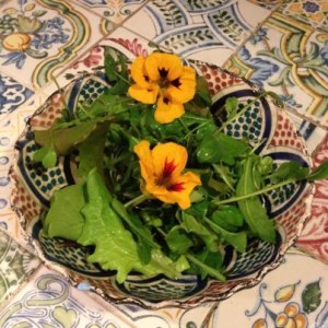 salad leaves from La rosilla