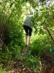 Wilderness walk