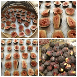 preparing figs for drying