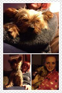 Fanny the recue dog.