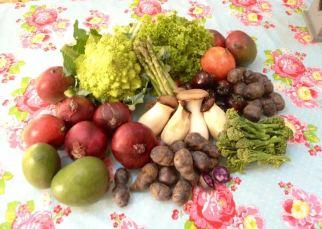 Harvest bounty.